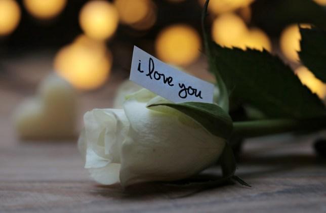 rose-3121235_1280